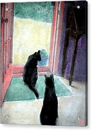 Black Cats Acrylic Print by Art by Kar