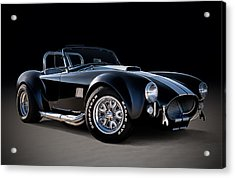 Black Cobra Acrylic Print by Douglas Pittman