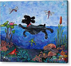 Black Cocker Swimming Acrylic Print