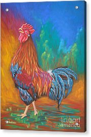 Black Copper Maran Rooster Acrylic Print