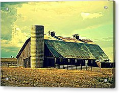 Black Forest Road Barn Acrylic Print by Antonia Citrino