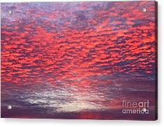 Black Friday Sunrise Acrylic Print