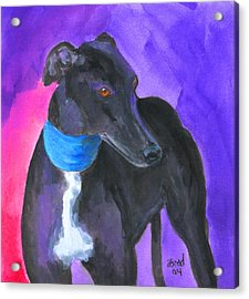 Black Greyhound Watercolor Acrylic Print