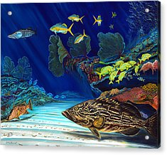 Acrylic Print featuring the painting Black Grouper Reef by Steve Ozment