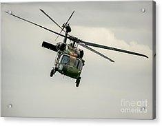 Black Hawk Swoops Acrylic Print by Ray Warren