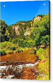 Black Hills Beauty Acrylic Print