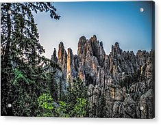 Black Hills Needles Acrylic Print