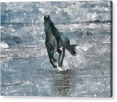 Acrylic Print featuring the painting Black Horse Running On The Beach by Georgi Dimitrov