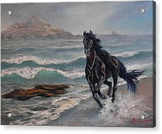 Black Jack  Acrylic Print by Gracia  Molloy