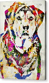 Black Lab Watercolor Art Acrylic Print by Christina Rollo