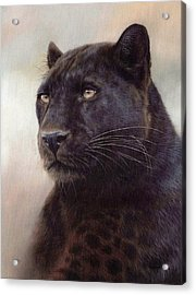 Black Leopard Painting Acrylic Print by Rachel Stribbling