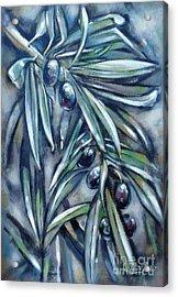 Black Olive Branch 200210 Acrylic Print