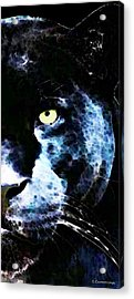 Black Panther Art - After Midnight Acrylic Print by Sharon Cummings