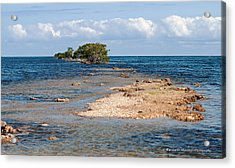 Black Point Marina - Cutler Bay Acrylic Print