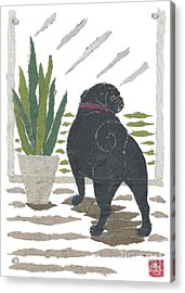 Black Pug Art Hand-torn Newspaper Collage Art Acrylic Print by Keiko Suzuki Bless Hue