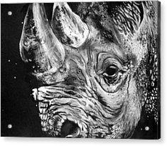 Black Rhino Acrylic Print by Sharlena Wood