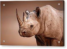 Black Rhinoceros Portrait Acrylic Print