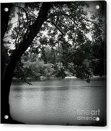 Black River Acrylic Print
