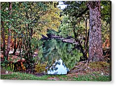 Acrylic Print featuring the photograph Black River Reflections by Linda Brown