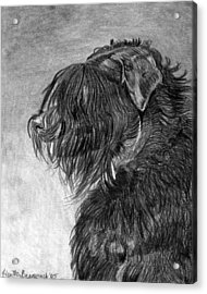 Black Russian Terrier Dog Portrait  Acrylic Print by Olde Time  Mercantile