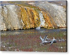 Black Sand Basin Runoff Yellowstone Acrylic Print by Bruce Gourley