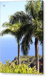 Black Sand Beach Lookout Acrylic Print