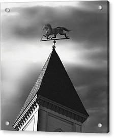Black Stallion Weathervane Acrylic Print by Larry Butterworth