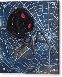 Black Widow Acrylic Print by Debbie LaFrance