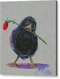 Blackbird Love Acrylic Print