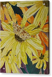 Blackeyed Susans And Butterfly Acrylic Print by Terry Holliday