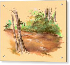 Blackwater Creek Acrylic Print by MM Anderson