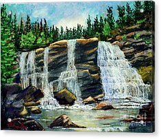 Blackwater Falls Acrylic Print by Bruce Schrader