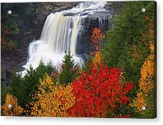 Blackwater Falls In Autumn Acrylic Print
