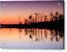 Acrylic Print featuring the photograph Blackwater Reflections by Jennifer Casey