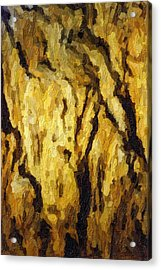 Blanchard Springs Caverns-arkansas Series 04 Acrylic Print by David Allen Pierson