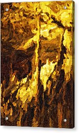 Blanchard Springs Caverns-arkansas Series 07 Acrylic Print by David Allen Pierson