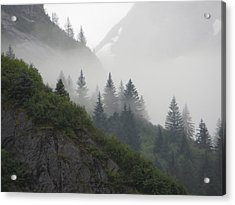 Blanket Of Fog Acrylic Print by Jennifer Wheatley Wolf