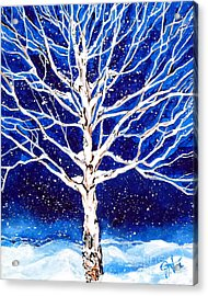 Acrylic Print featuring the painting Blanket Of Stillness by Jackie Carpenter