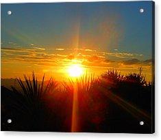 Blaze In The Desert Acrylic Print