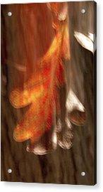 Blaze Of Glory Acrylic Print