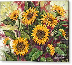 Blazing Sunflowers Acrylic Print by Paul Brent