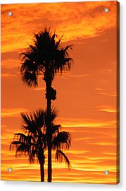 Acrylic Print featuring the photograph Blazing Sunset by Deb Halloran