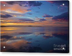Blessed Acrylic Print by Amazing Jules
