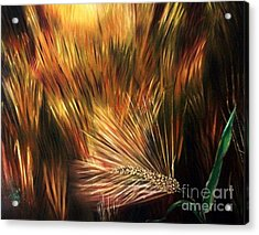 Blessed Seeds Collection - Fields Of Gold Acrylic Print