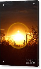 Blinded By The Light Acrylic Print by Crush Creations