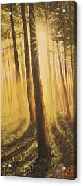 Acrylic Print featuring the painting Blinded by Dan Wagner