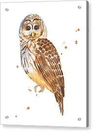 Blink Acrylic Print by Alison Fennell