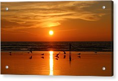 Bliss At Sunset   Acrylic Print