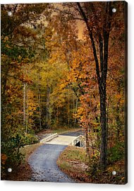 Bliss - Autumn Landscape Acrylic Print by Jai Johnson
