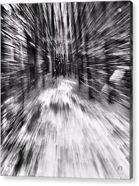 Blizzard In The Forest Acrylic Print by Dan Sproul